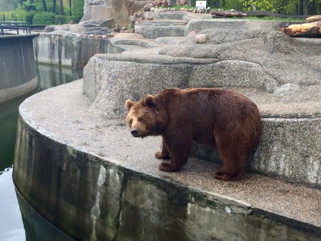 Warsaw Zoo