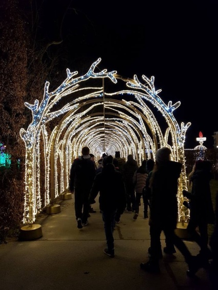 Royal Garden of Lights in Wilanow - it is a very popular exibition enjoyed by every one: us and tourists