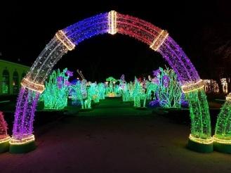 Colorful garden of magic - a part of the evening Wilanow gardens exibition
